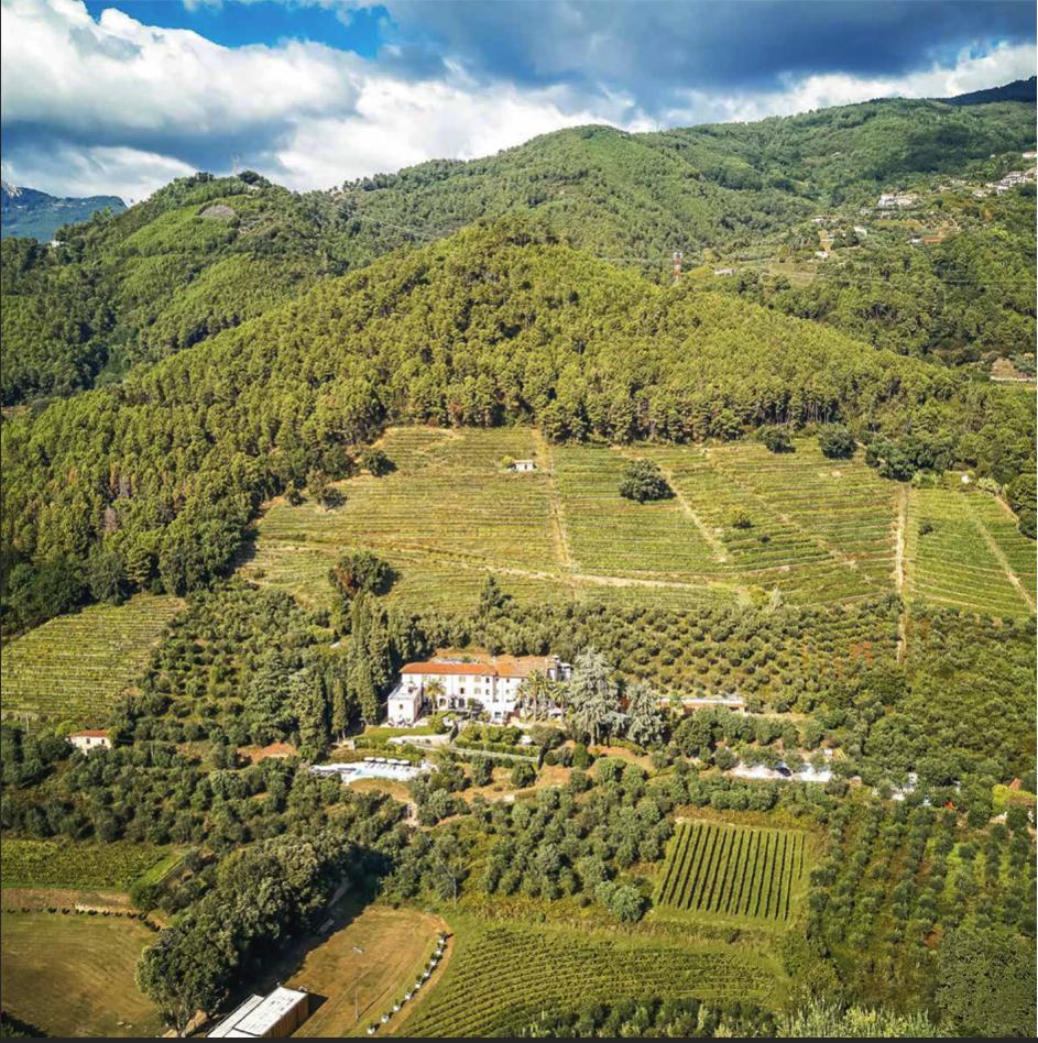 Montepepe Winery