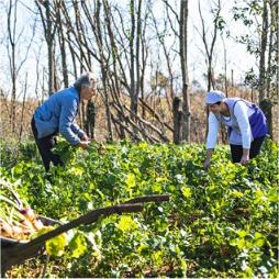 Agriturismo La Selva